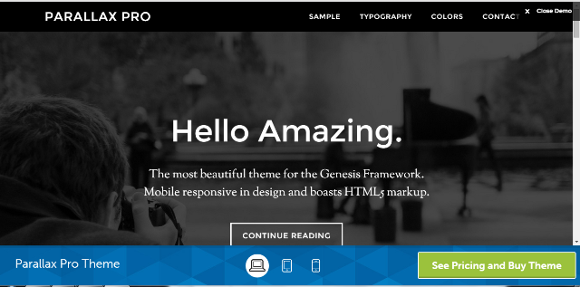 Parallax Pro Best Paid Theme for WordPress Blogs